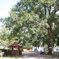 Camping aire naturelle de Perroy