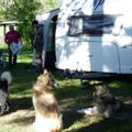 Camping aire naturelle Les Pins