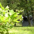 Bel'epoque du Pilat - Camping Sites et Paysages