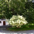 Camping à la ferme Au Moulin de Feuyas