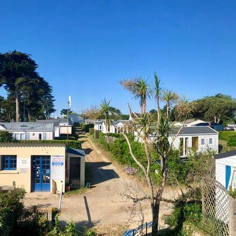 Camping Le Bois d'Amour - Camping Finistere