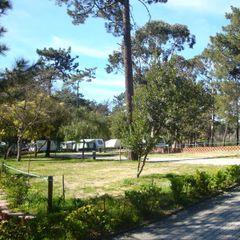 Camping Caminha