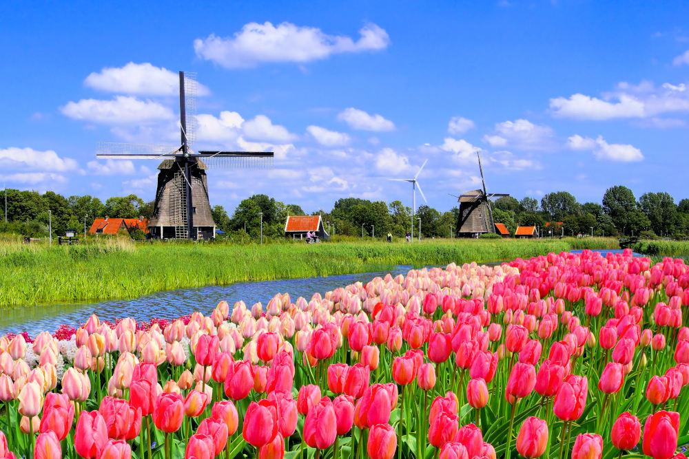 Windmolen-Nederland
